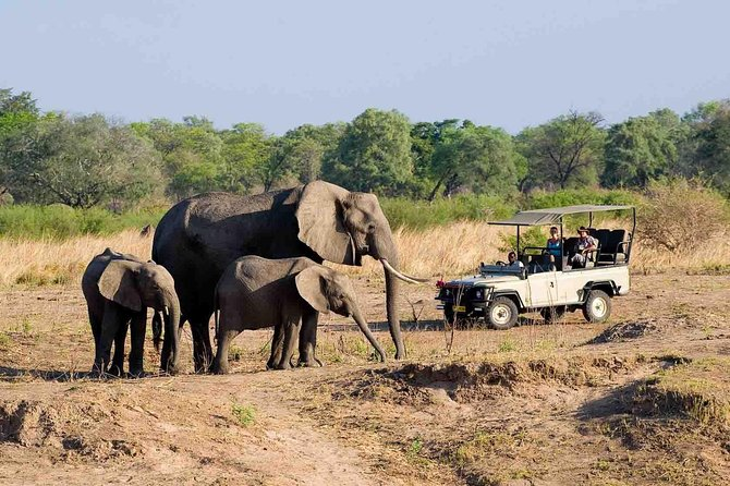 Zambezi National Park tour activities and safari