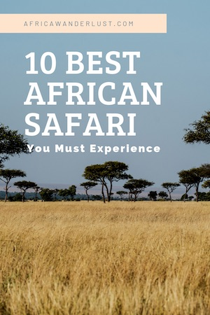 In the market for an African adventure? Here are the very best safari destinations in Africa to cross of your bucket list. #africansafari #africa #tanzania #zimbabwe #southafrica #botswana #zambia #kenya #adventure #travel #wanderlust