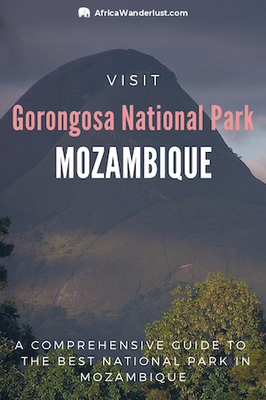 Guide to help you plan your visit to Gorongosa National Park, Mozambique: highlights, facts, best things to do, see, accommodation, wildlife, what to pack,  safety tips, and more. #mozambique #africatravel #africadestinations #traveltips #traveldestinations #bucketlist #adventuretravel  #travelguide #solotravel #solofemaletravel #solotraveltips