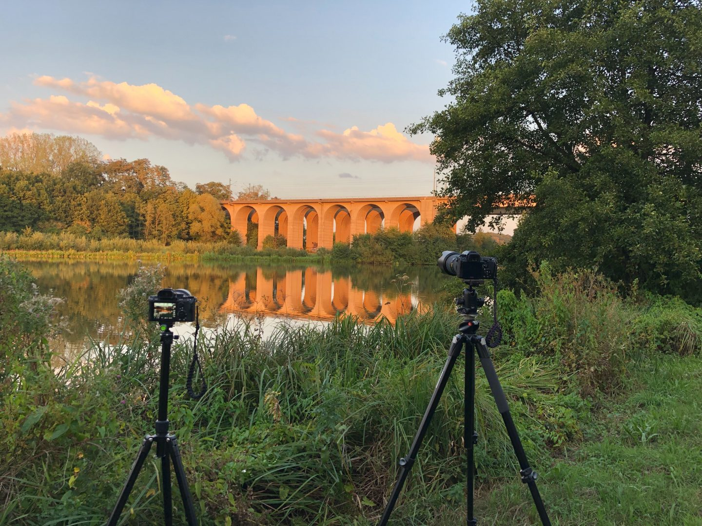 Using a best camera for safari to take a landscape photo