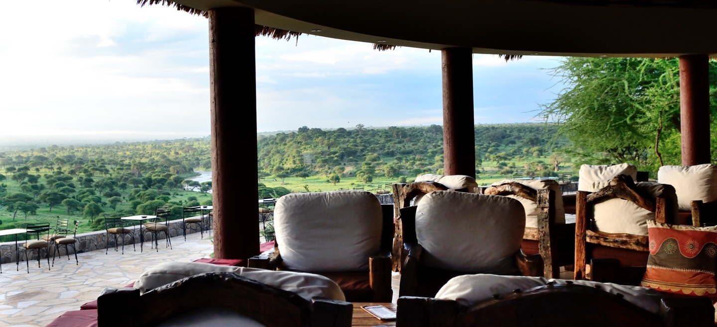 safari lodge veiw